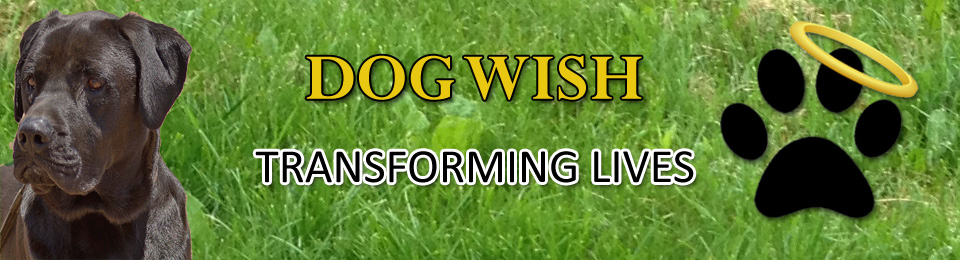 Dog Wish Service Dogs